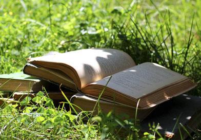 «Эти, напрасно забытые книги!»