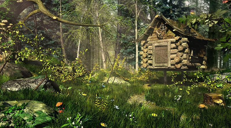 Загадки в лесу на каждом шагу